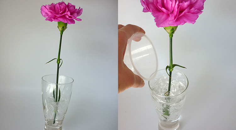 3 How to, How to arrange flower in less than 3 minutes.