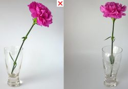 how to arrange flower in less than 3 minutes
