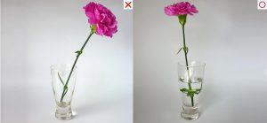 How to arrange one flower in a vase with stem