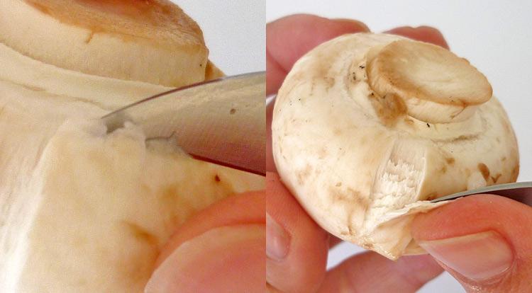 Mushroom art, peel mushroom skin off step 1