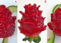3 How to, strawberry rose