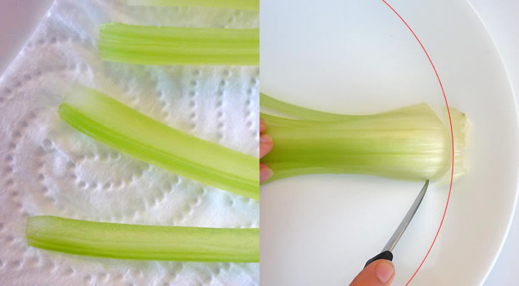 Food art with starry celery tree, soften celery stalk step 4